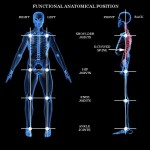 Posture Alignment Therapy
